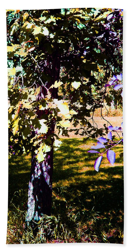 Tree In Summer Beach Towel featuring the photograph Summer Sulstice by Joanne Smoley