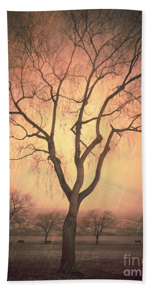 Summerland Beach Towel featuring the photograph Summerland Light In Winter by Tara Turner