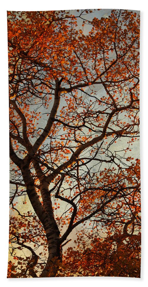 Fall Beach Towel featuring the photograph Summing Nature Call by The Artist Project