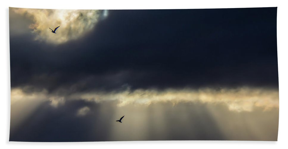 Sunset Beach Towel featuring the photograph Sun Beams And Seagulls by Kevin Myron