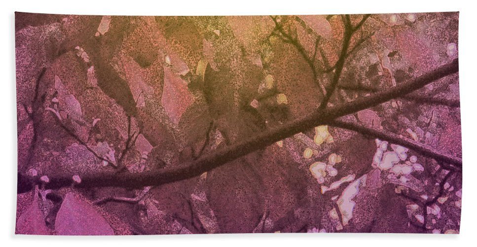 Tree Beach Towel featuring the photograph Sun Filter by Ian MacDonald