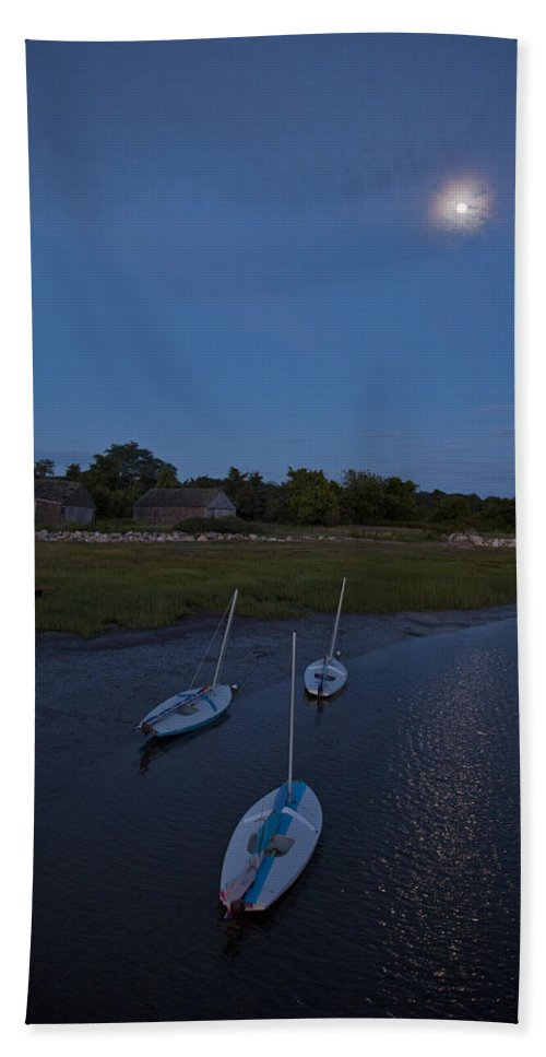 Sunfish Beach Towel featuring the photograph Sunfishes In Moonlight by Charles Harden