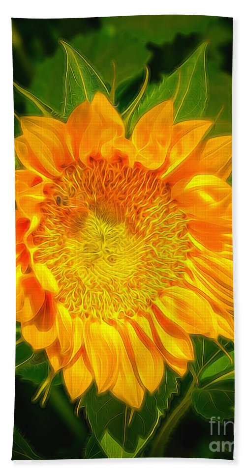 Sunflower Beach Towel featuring the photograph Sunflower 6 by Larry White
