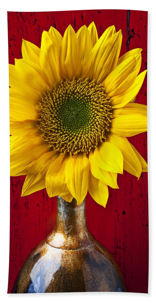 Sunflower Close Up Beach Towel featuring the photograph Sunflower Close Up by Garry Gay