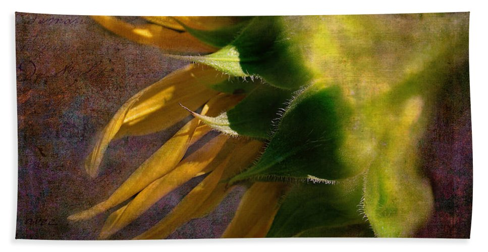Sunflower On The Side Beach Towel featuring the photograph Sunflower On The Side by Bellesouth Studio