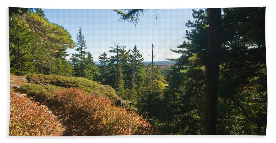 acadia National Park Beach Towel featuring the photograph Sunlit Path by Paul Mangold