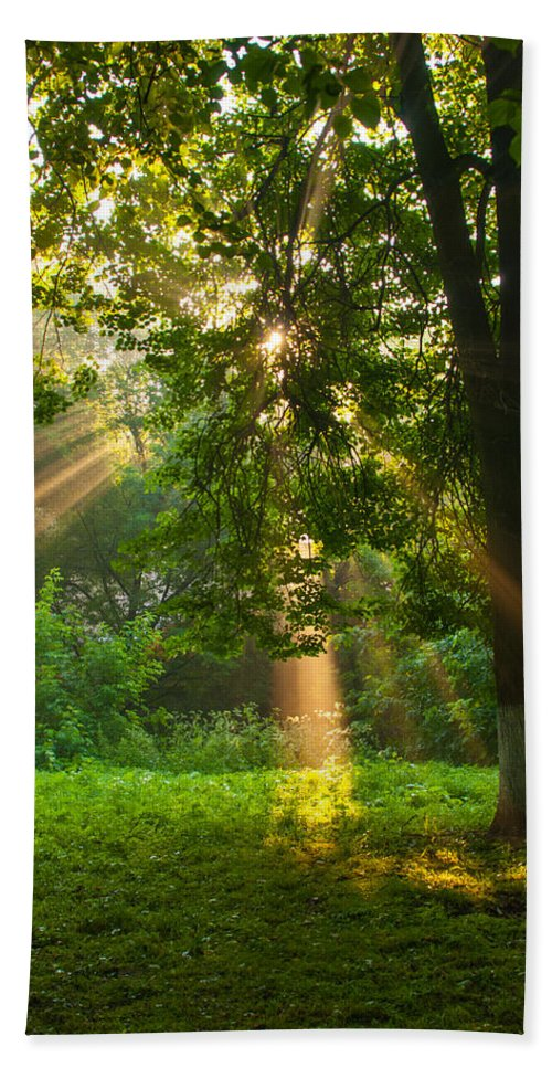 Rays Beach Towel featuring the photograph Sunny Rays by Sergei Dolgov