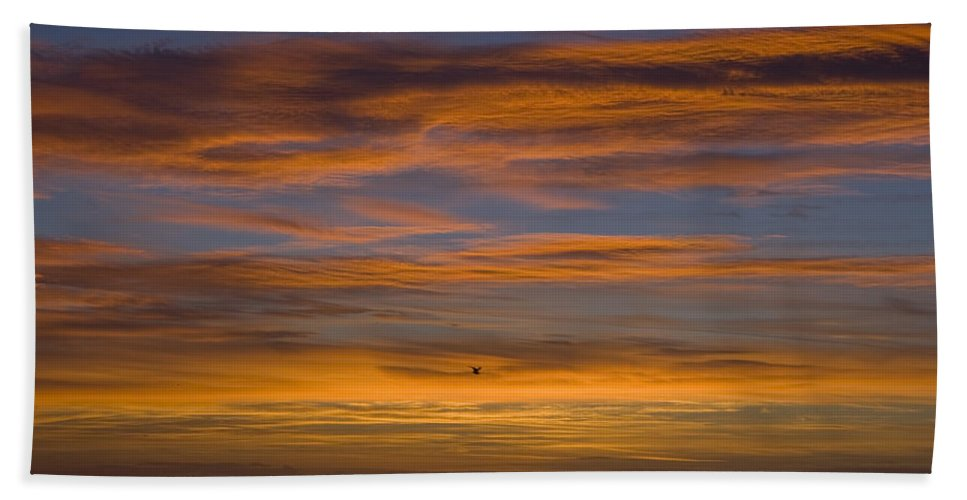 Sun Sunrise Cloud Clouds Morning Early Bright Orange Bird Flight Fly Flying Blue Ocean Water Waves Beach Towel featuring the photograph Sunrise by Andrei Shliakhau