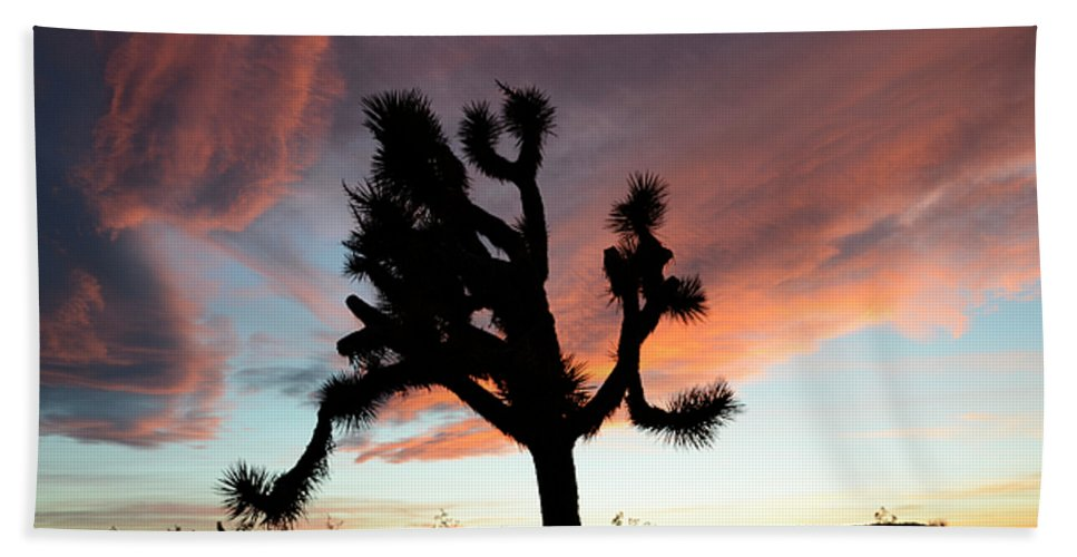 Joshua Tree National Park Beach Towel featuring the photograph Sunset At Joshua Tree by Bob Christopher