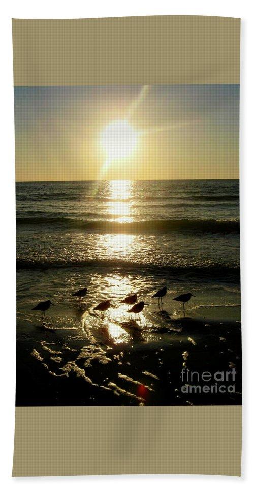 Birds Beach Towel featuring the photograph Sunset At St. Petersburg by Rachel Morrison