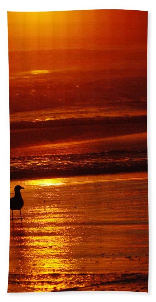 Sunset Beach Towel featuring the photograph Sunset Bird 2 by Jill Reger