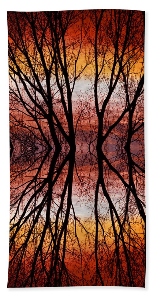 Abstracts Beach Towel featuring the photograph Sunset Tree Silhouette Abstract 2 by James BO Insogna