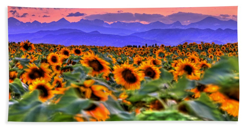 Sunsets Beach Towel featuring the photograph Sunsets And Sunflowers by Scott Mahon