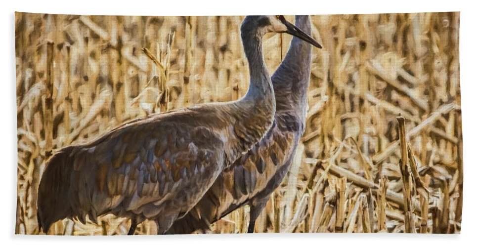 Nature Beach Towel featuring the photograph Sunshine On My Shoulders by Janice Pariza