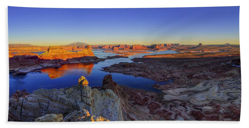 Nature Beach Towel featuring the photograph Surreal Alstrom by Chad Dutson