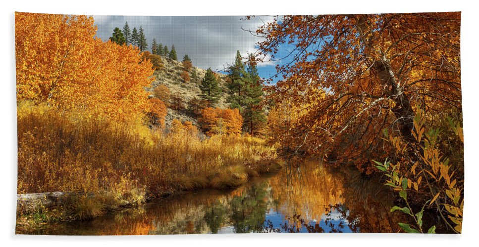 Landscape Beach Towel featuring the photograph Susan River Reflections by James Eddy