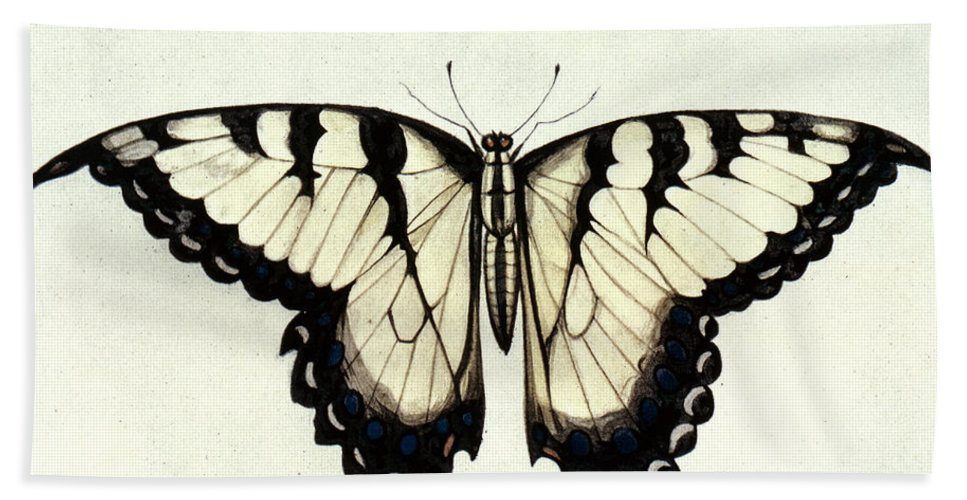 1585 Beach Towel featuring the photograph Swallow-tail Butterfly by Granger