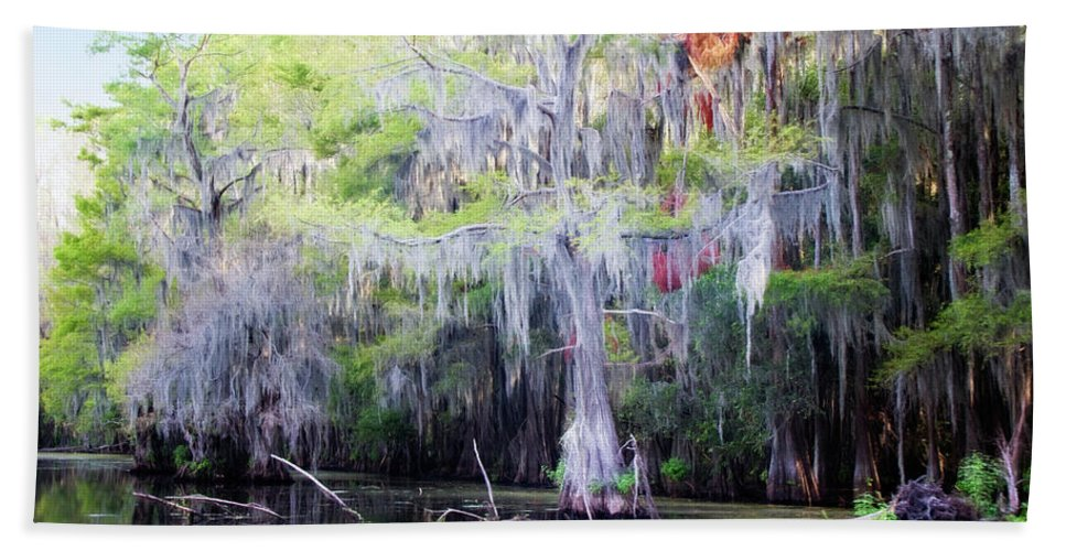 Caddo Lake Beach Towel featuring the photograph Swamp Colors by Lana Trussell