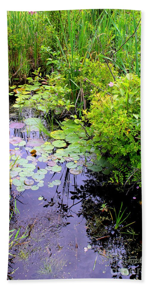 Swamp Beach Towel featuring the painting Swamp Plants by Corey Ford