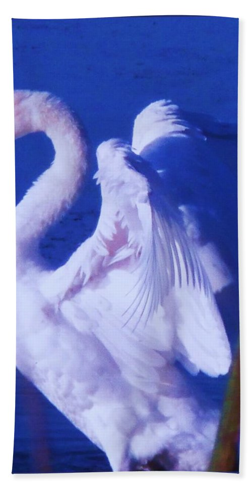 Cape Beach Towel featuring the painting Swan At Cape May Point State Park by Eric Schiabor