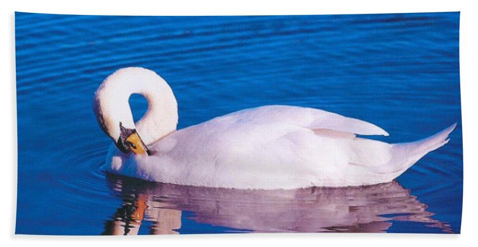 Swan Beach Towel featuring the photograph Swan by John Hughes