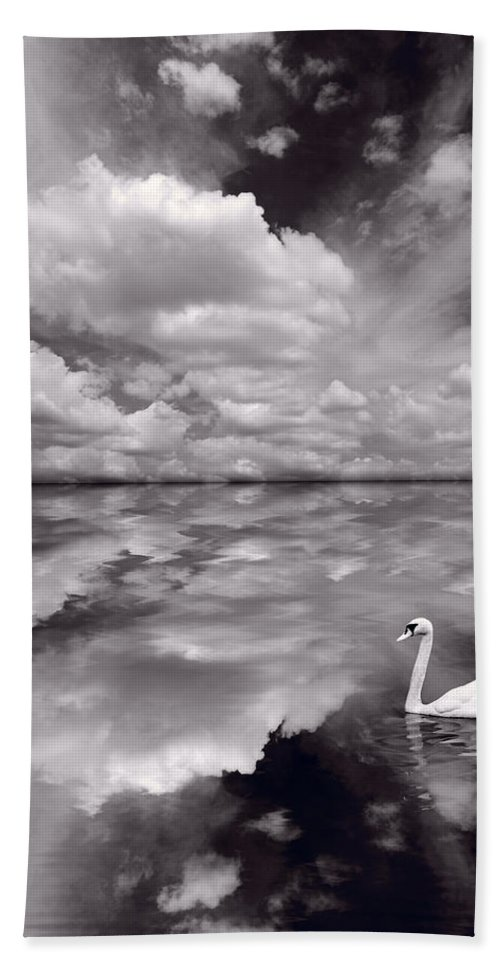 Bird Beach Towel featuring the photograph Swan Lake Explorations B W by Steve Gadomski