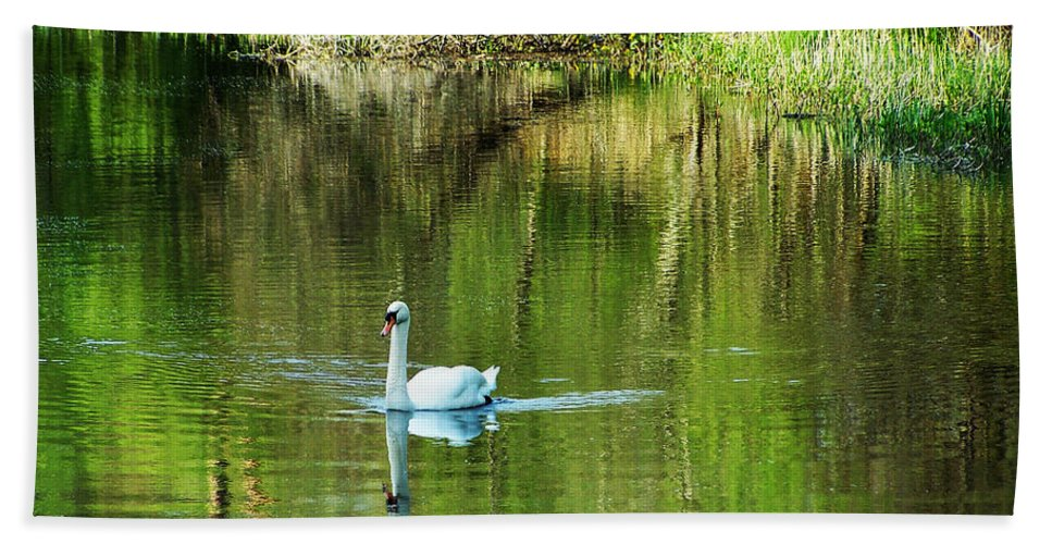 Irish Beach Towel featuring the photograph Swan On The Cong River Cong Ireland by Teresa Mucha