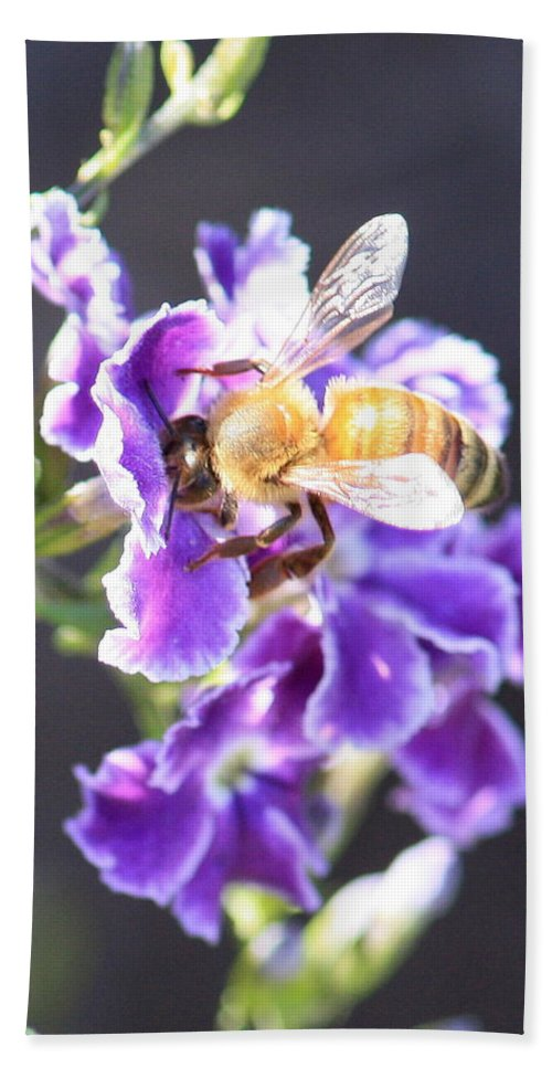 Bee Beach Towel featuring the photograph Sweet Bee by Carol Groenen