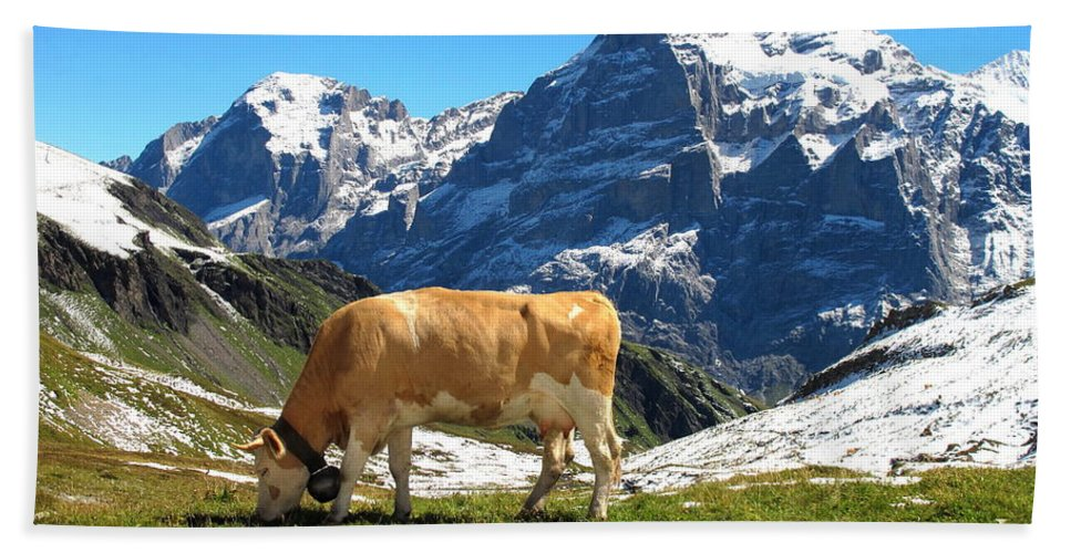 Switzerland Beach Towel featuring the photograph Swiss Scene by Mary Ellen Mueller Legault