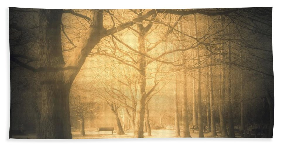 Sepia Beach Towel featuring the photograph Taking Cover by Tara Turner