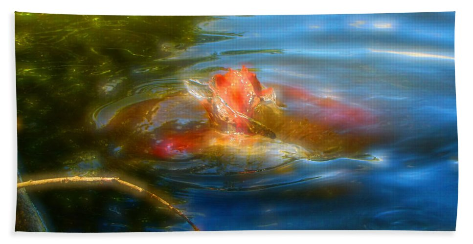 Koi Beach Towel featuring the photograph Tale Of The Wild Koi 2 by September Stone