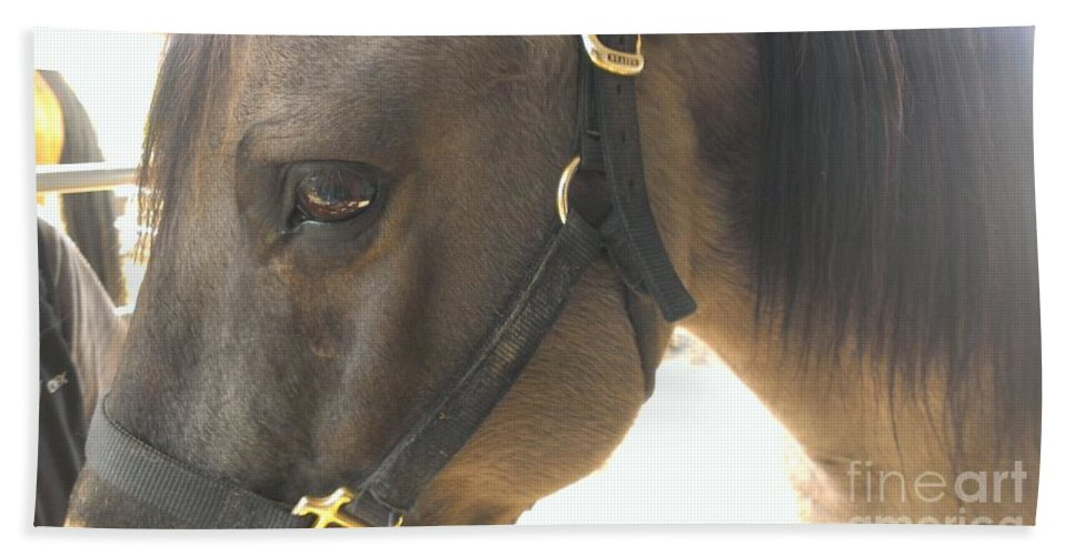 Horse Beach Towel featuring the photograph Talker by LKB Art and Photography