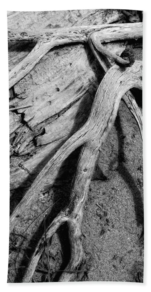 Wood Beach Towel featuring the photograph Tender Death by Donna Blackhall