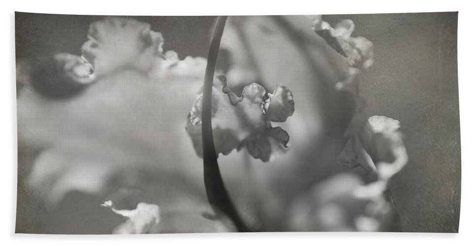 Flower Beach Towel featuring the photograph Tenderness by Laurie Search