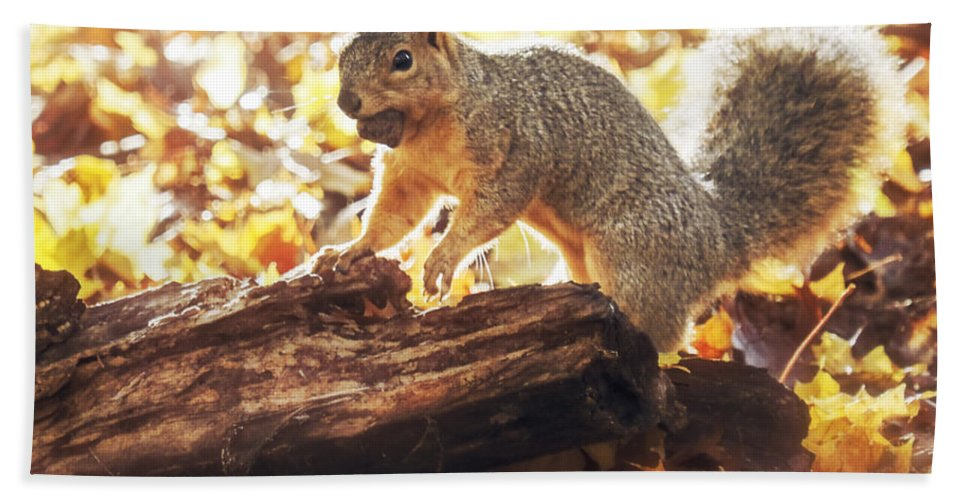 Autumn Beach Towel featuring the digital art Thanksgiving Feast by Will Jacoby Artwork