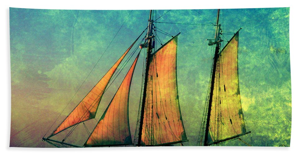 The America Beach Towel featuring the photograph The America Nr 2 by Susanne Van Hulst