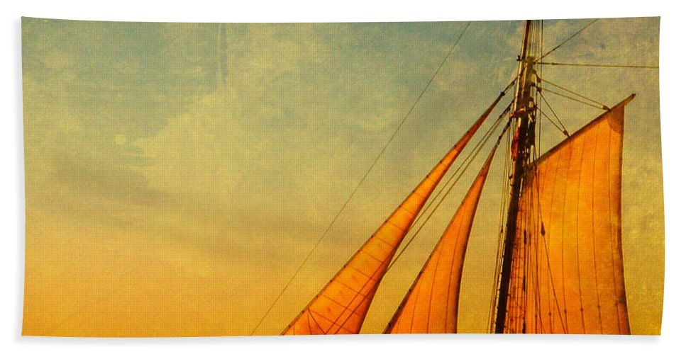 The America Beach Towel featuring the photograph The America Nr 3 by Susanne Van Hulst