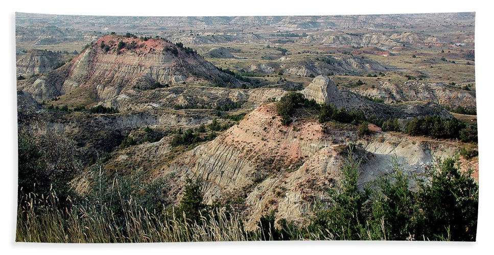 North Dakoda Beach Towel featuring the photograph The Badlands by D'Arcy Evans