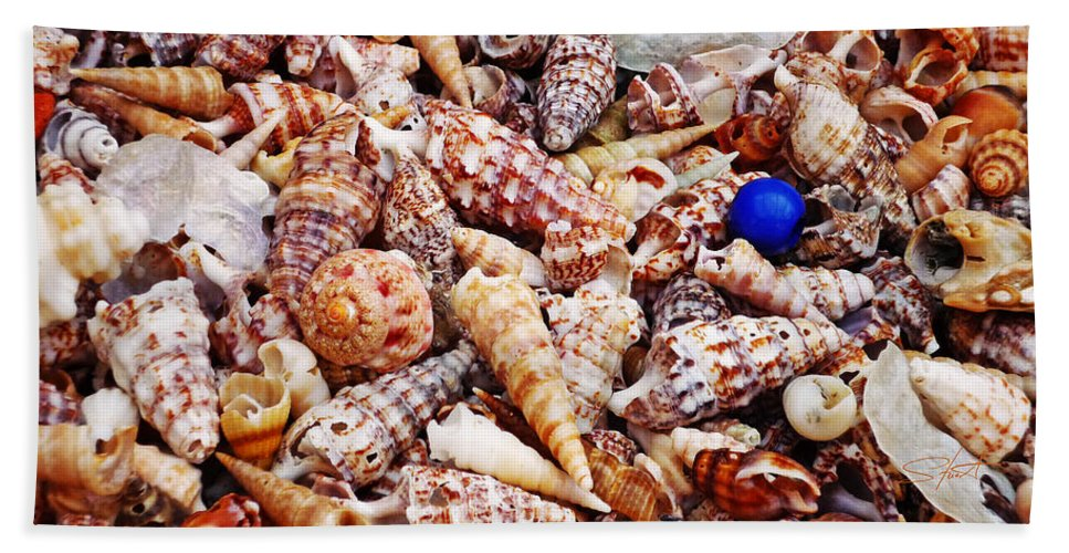 Shell Beach Towel featuring the photograph The Blue Bead by Charles Stuart