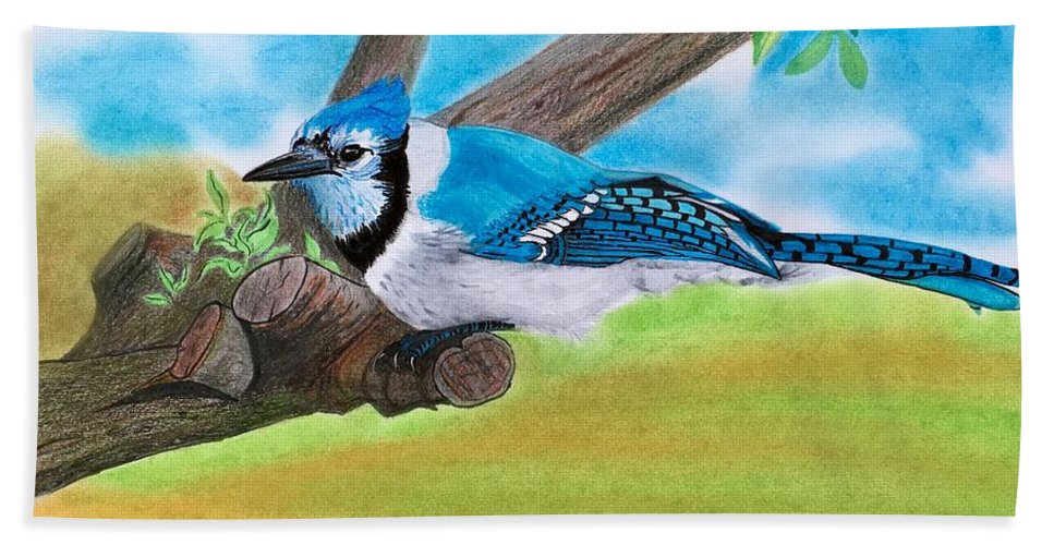 Birds Beach Towel featuring the drawing The Blue Jay by Tony Clark