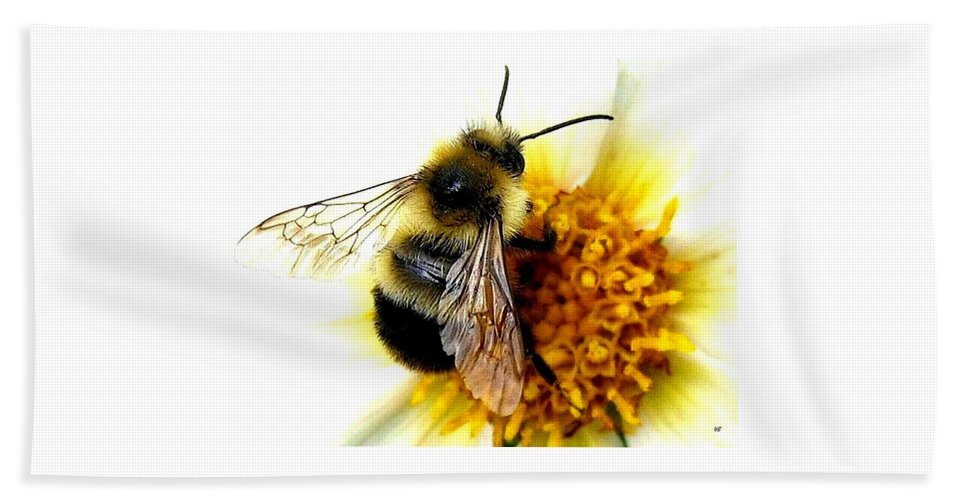 Honeybee Beach Towel featuring the photograph The Buzz by Will Borden