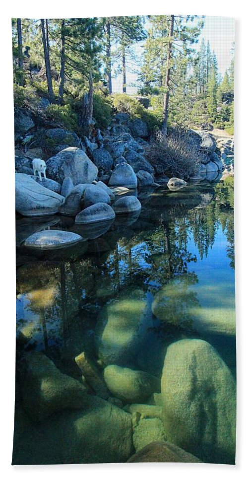 Lake Tahoe Beach Towel featuring the photograph The Clarity Of Morning by Sean Sarsfield