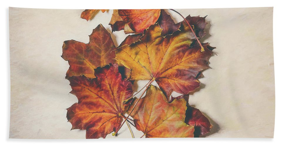 Leaves Beach Towel featuring the photograph The Colors Of Fall by Scott Norris