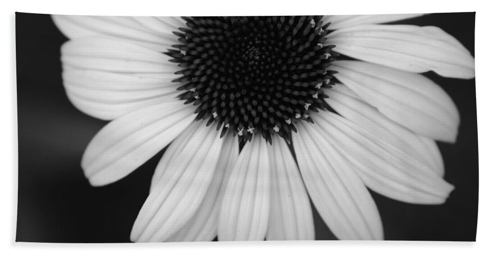 Flower Beach Towel featuring the photograph The Dark In The Light by Jessica Myscofski