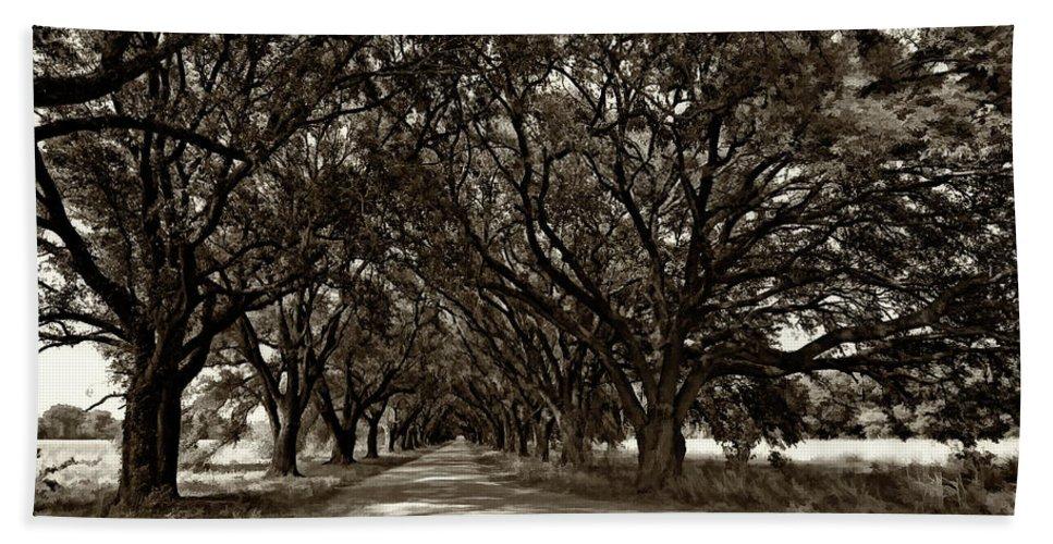 Evergreen Plantation Beach Towel featuring the photograph The Deep South Bw by Steve Harrington