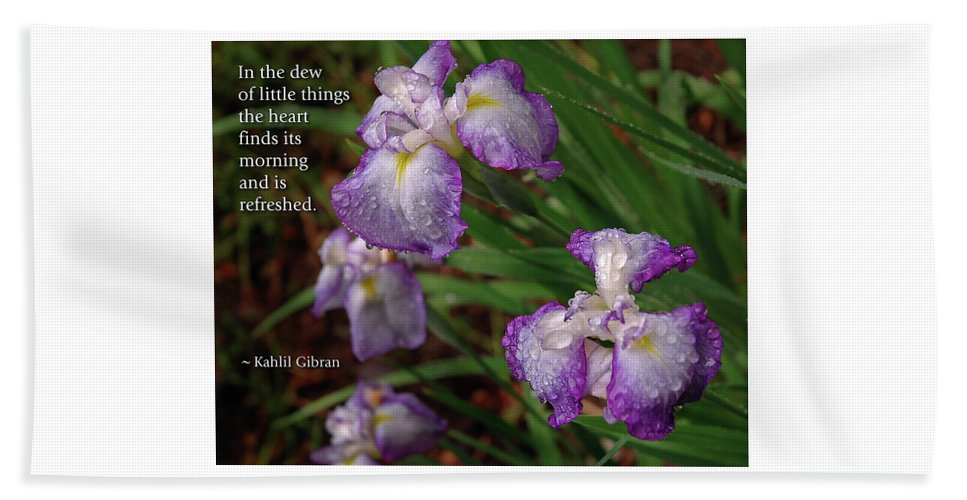 Iris Beach Towel featuring the photograph The Dew Of Little Things by Marie Hicks