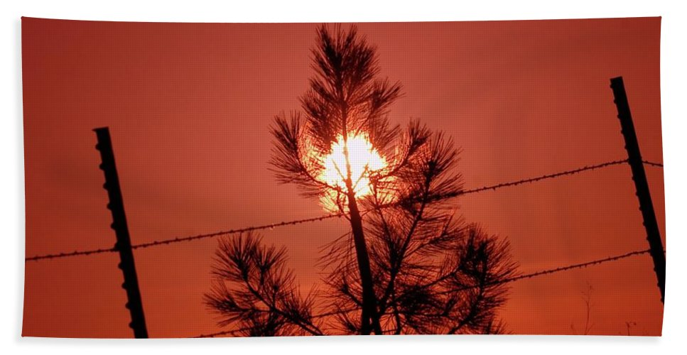 Rural Scense Beach Towel featuring the photograph The End Of Day by Jeff Swan