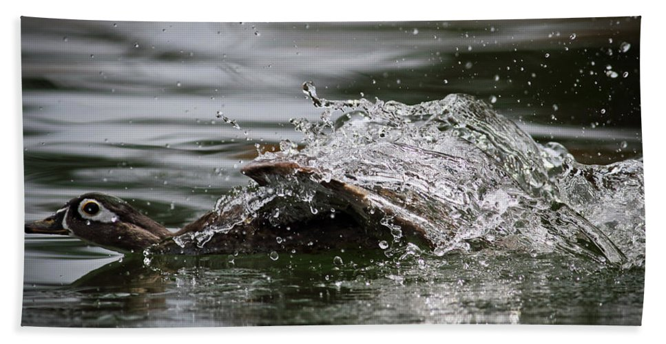 Duck Beach Towel featuring the photograph The Escape by Douglas Stucky