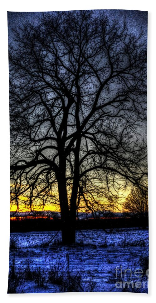 Country Beach Towel featuring the photograph The Field Tree Hdr by September Stone