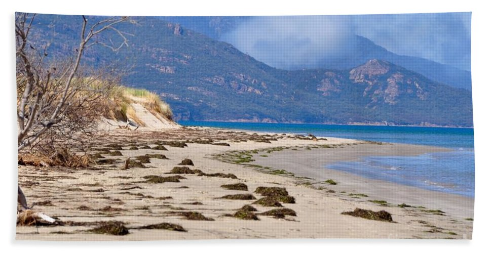 Coals Bay Beach Towel featuring the photograph The Hazards From The Beach by Csilla Florida